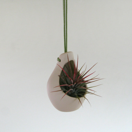 Clove Hanging Planter