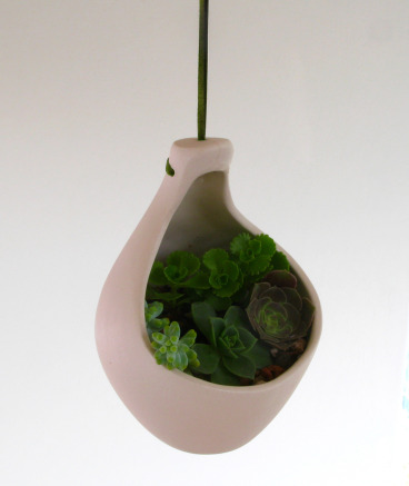 Giant Clove Hanging Planter